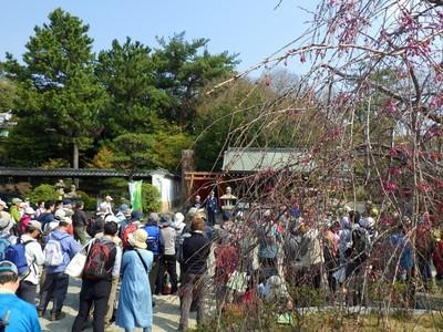 森稲荷神社でスタートミーティング.jpg