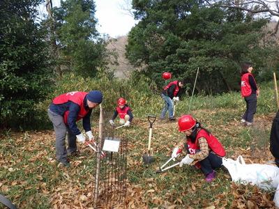 UCC上島珈琲活動地内に10本植樹.JPG