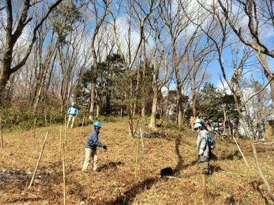 東亜バルブエンジニアリング活動地にも5本植樹.jpg